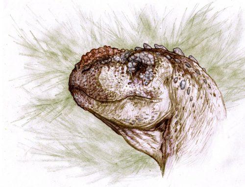 "Tralkasaurus, el ""Reptil Trueno"""
