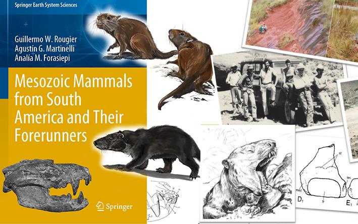 Nuevo libro sobre mamíferos fósiles de la Era Mesozoica en América del Sur
