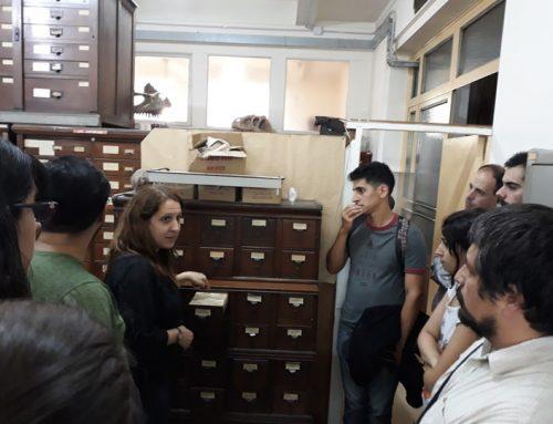 Visitas a las colecciones paleontológicas del Museo