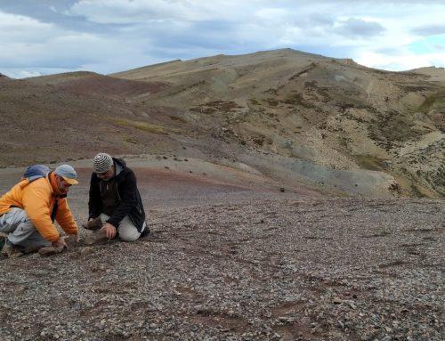 Visita de paleontólogos del Museo a Santa Cruz