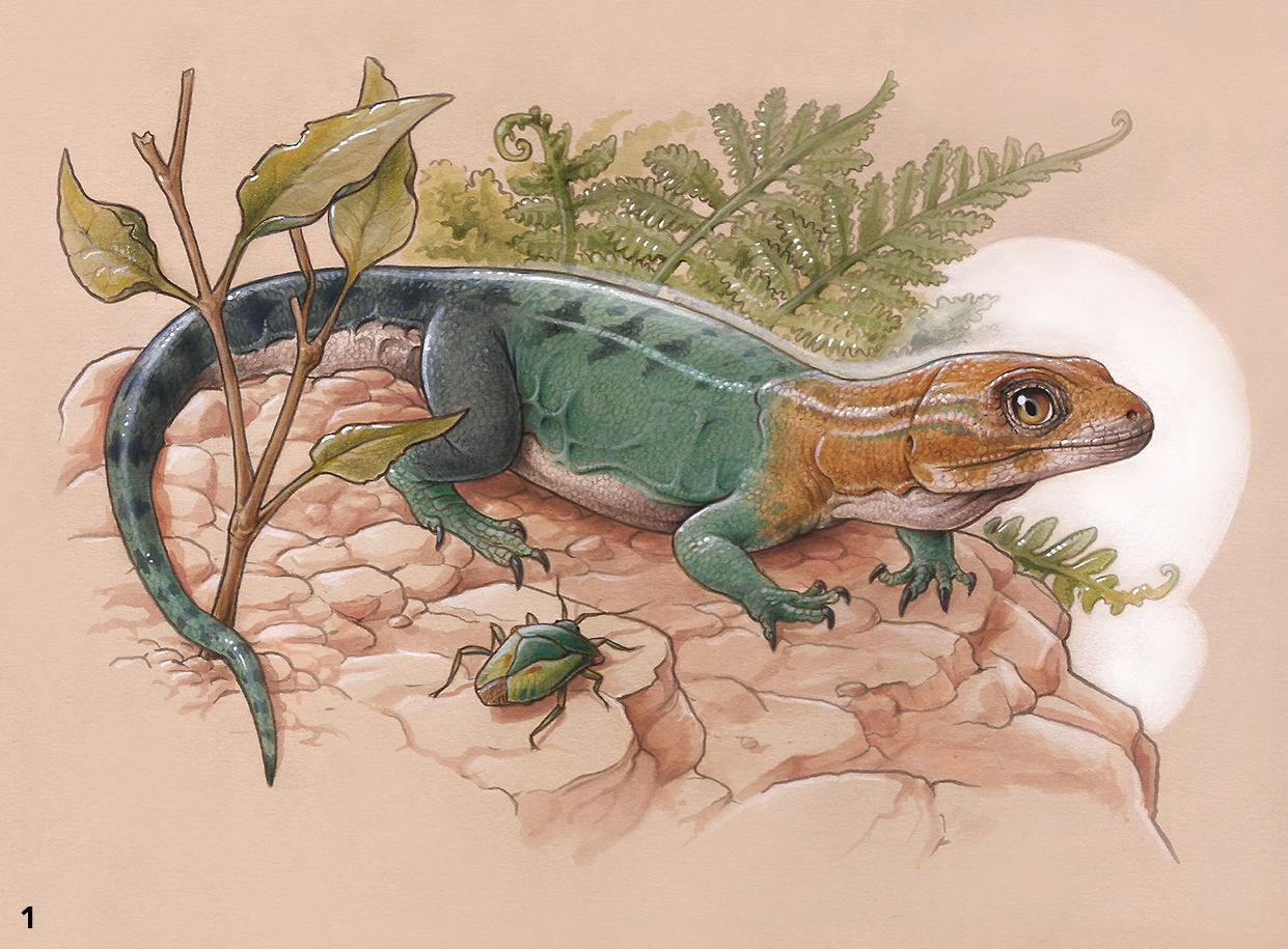 Un nuevo lagarto que vivió hace unos 84 millones de años en la Patagonia