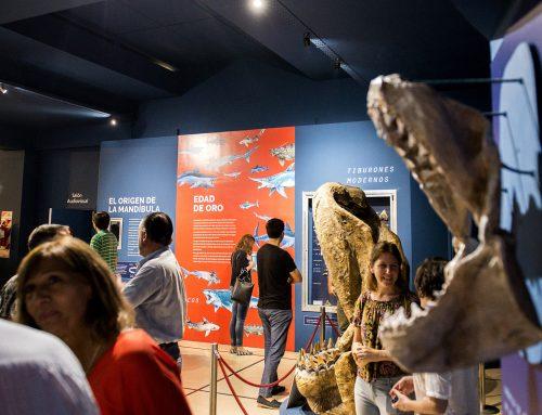 Sala de Tiburones, rayas y quimeras