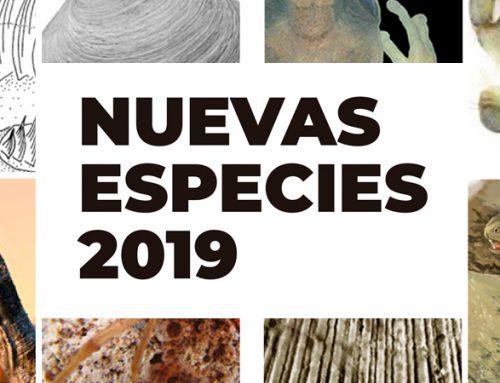 Nuevas Especies 2019