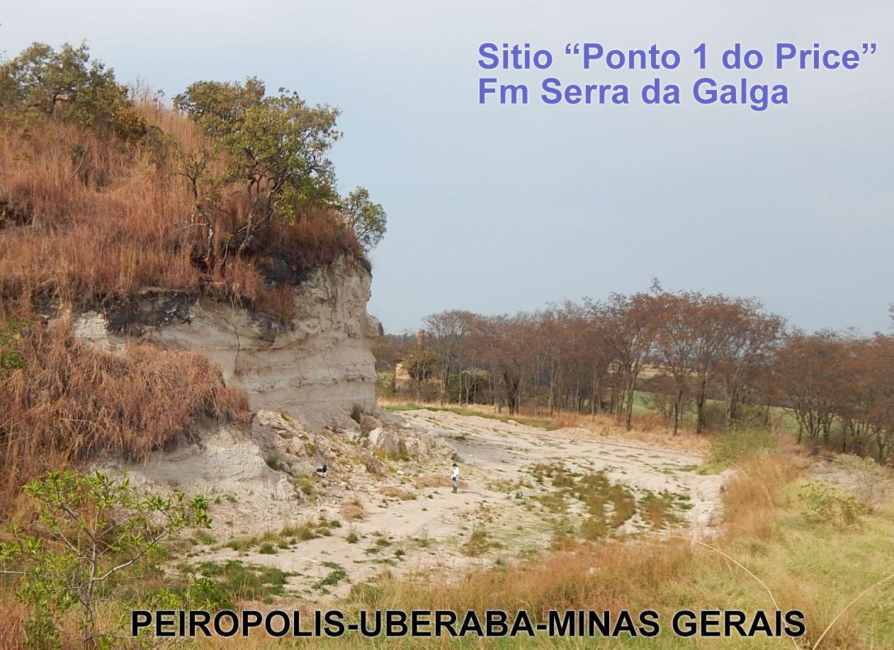 Formación Serra da Galga (Grupo Bauru, Cuenca Bauru): una nueva unidad geológica del Cretácico Superior del sudeste de Brasil, con uno de los registros fósiles más destacado para América del Sur