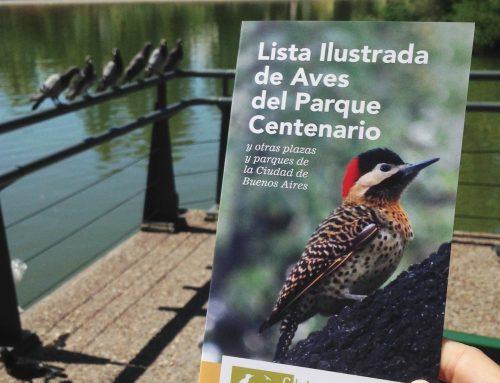 Listas Ilustradas: Aves y Mariposas y polillas del Parque Centenario