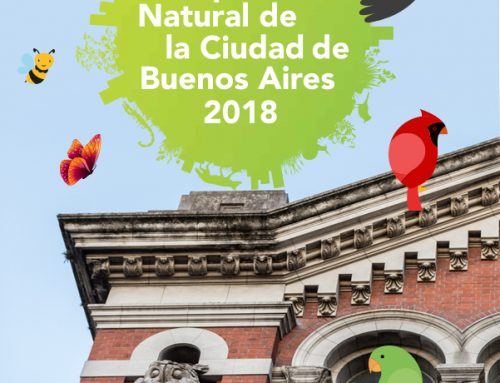 Resultados City Nature Challenge 2018