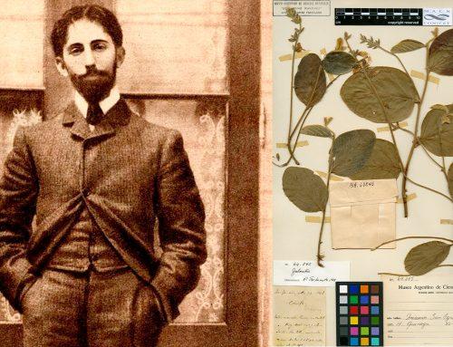 Horacio Quiroga en el MACN: Cuentista, dramaturgo, poeta y … botánico